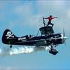 Wing Walker Defies Gravity