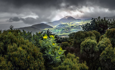 Highlands of Pico Island