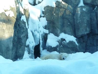 Alaska December 2008