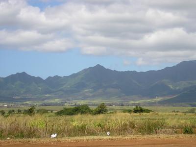 More Waianae Mountains