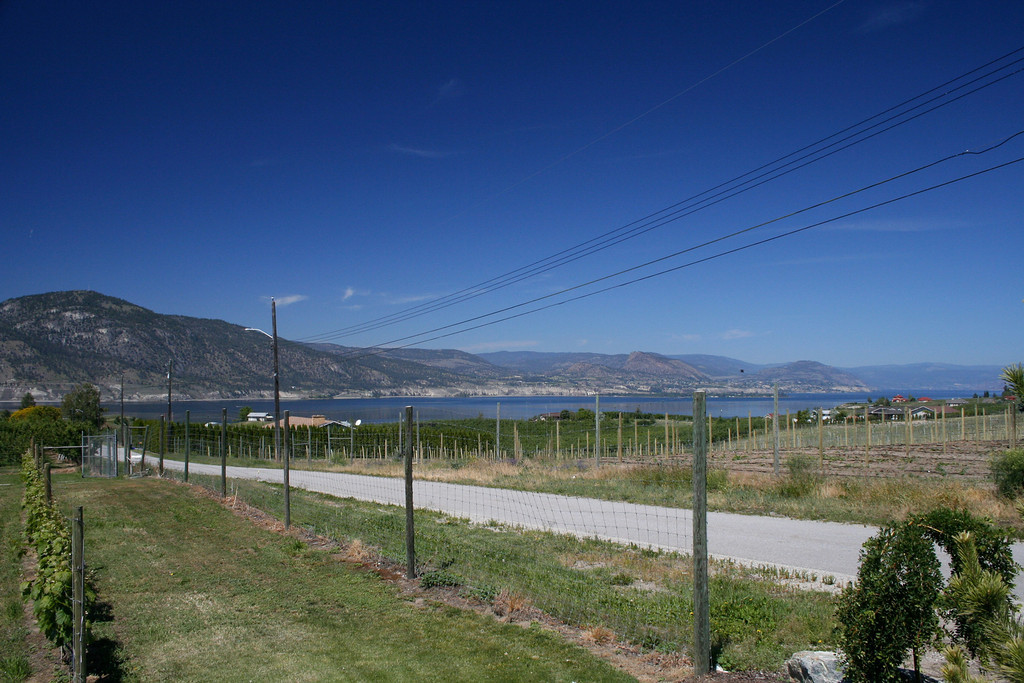 Lake Okanagan, is 81 miles long, between 2 and 3 miles wide, and has a surface area of 210 square miles. The lake's maximum depth is 781 feet.
