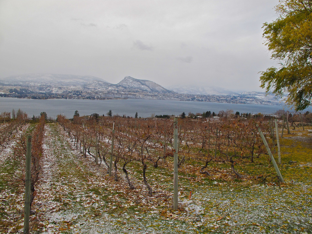 You still have a great view of the Lake Okanagan no matter what the season.