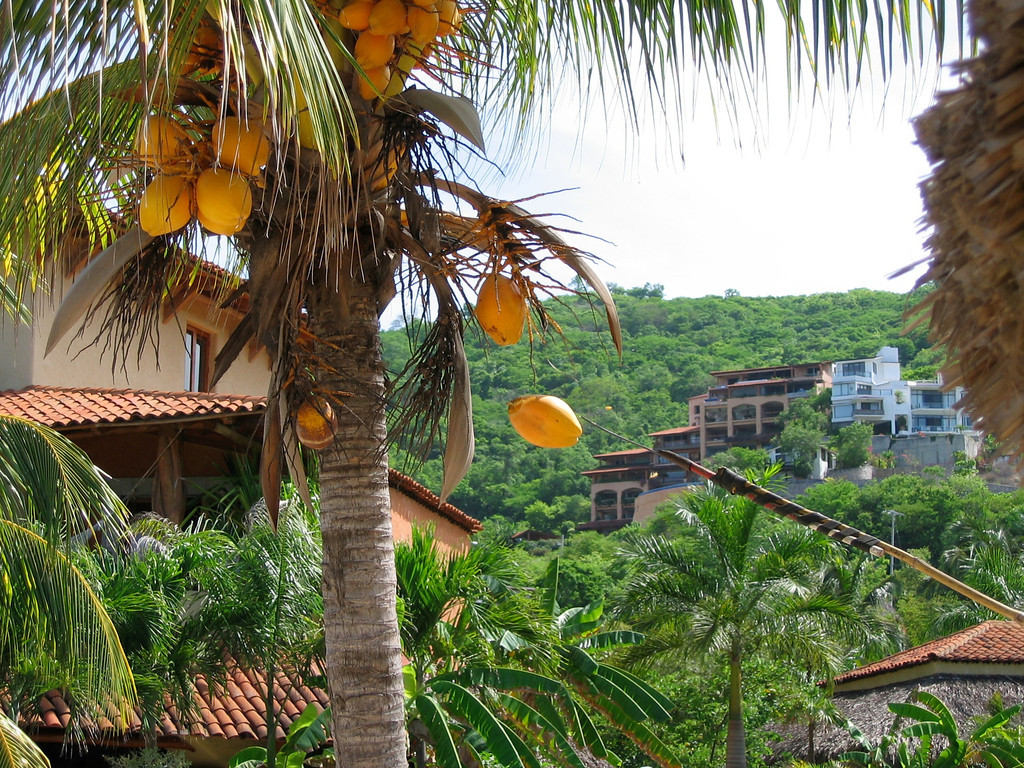 The area around Zihuatanejo is very hilly.