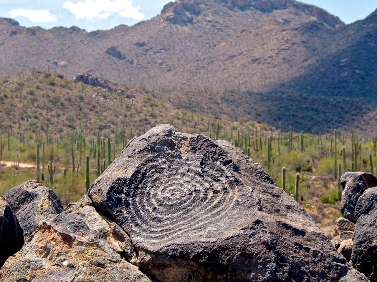 These petroglyphs can be seen near Signal Hill in Saguaro Naitonal Park near Tucson.