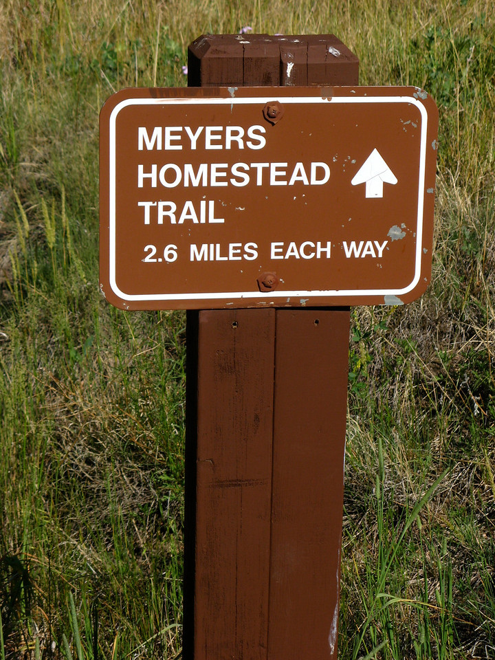 The Meyers Homestead Trail is just outside of Boulder. Starting at 7,344 feet of elevation, the trail climbs through pine forests and a small aspen grove before reaching the summit at 8,000 feet.