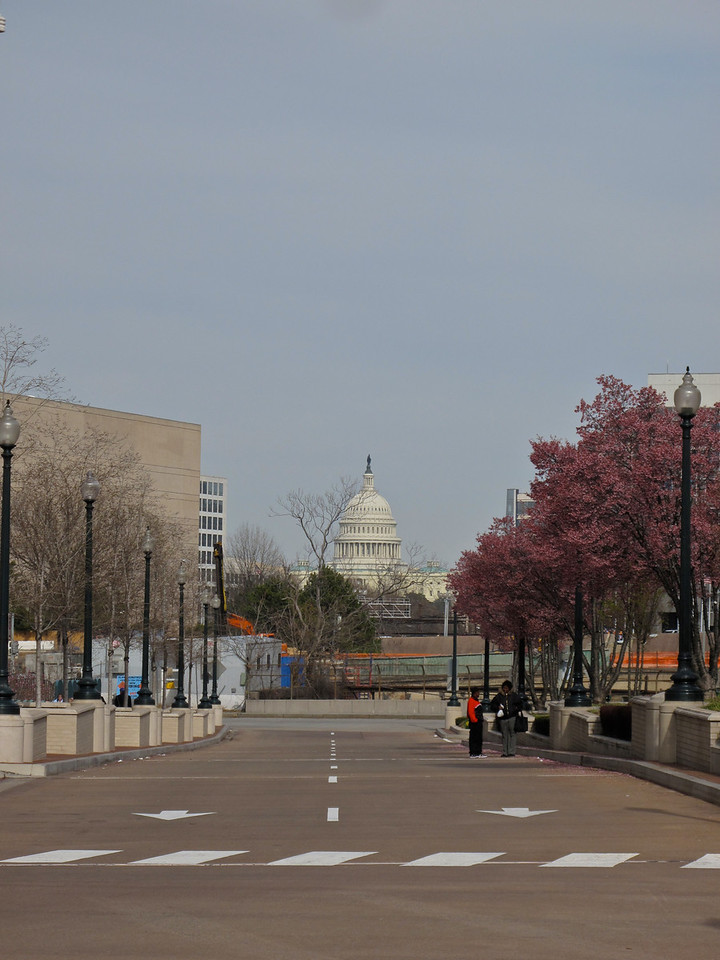 The US Capitol Building.
