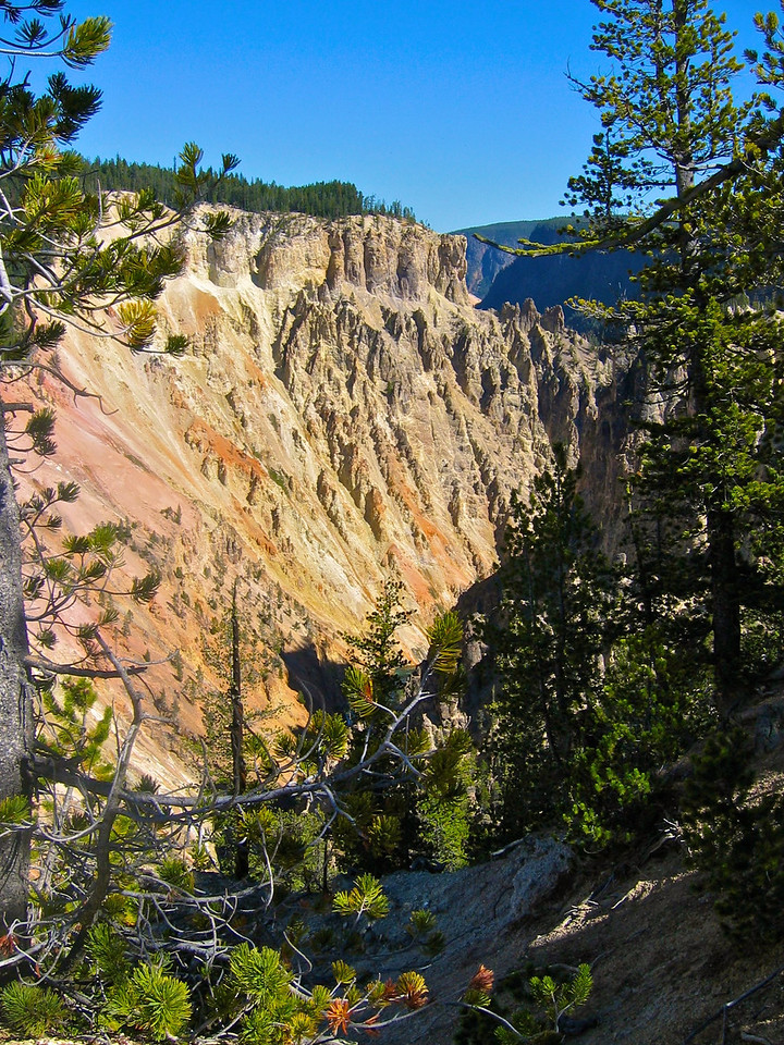 The Grand Canyon of the Yellowstone is the first large canyon on the Yellowstone River downstream from Yellowstone Falls in Yellowstone National Park.