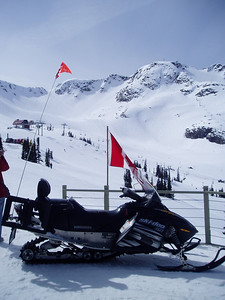 Whistler Ski Area: 8,171 acres = 3.307 hectares