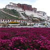 Potala Palace – Lhasa, Tibet (11,975ft/3.650m)