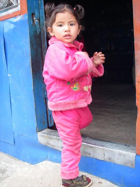 Annapurna Region - Ghorepani 9