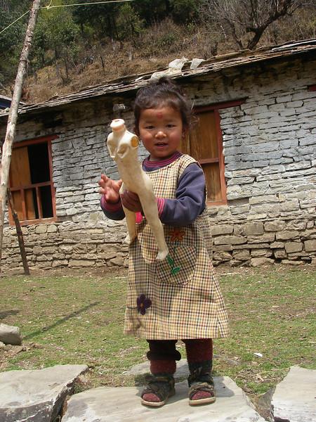 Annapurna Region - Ghorepani 11