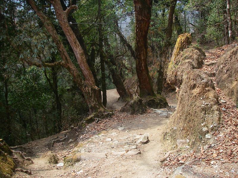Annapurna Region - Ghorepani 4
