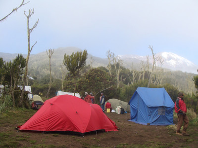 Machame Camp (Hut) - 3010 m we reached in 5.5 hrs