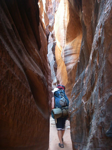 Wire Pass and Buckskin Gulch generally do not require rappelling equipment, but there may be a few pour-offs or the necessity to wade in ankle- to chest-high water and/or mud.
