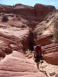 Buckskin Gulch lies within the Grand Staircase-Escalante National Monument and Paria Canyon-Vermilion Cliffs Wilderness Area of the Bureau of Land Management.