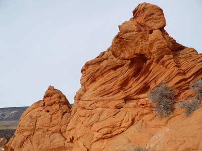South Coyote Buttes 21