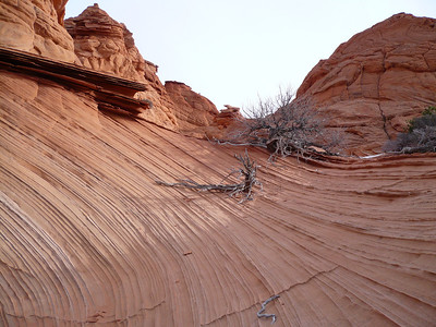 South Coyote Buttes 28