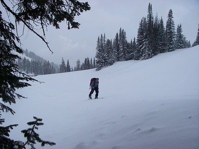 Next day our goal was Grand Targhee Ski Resort and Fred's Mountain (9,943ft = 3.031m)