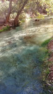 Havasu Springs
