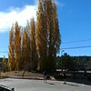 Autumn colors in Flagstaff, AZ