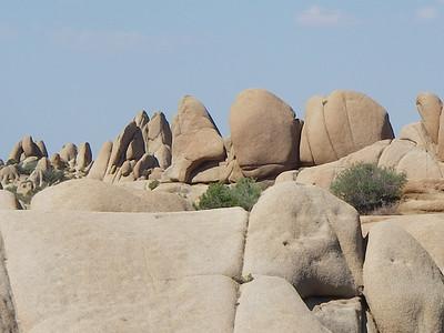 Jumbo Rock area