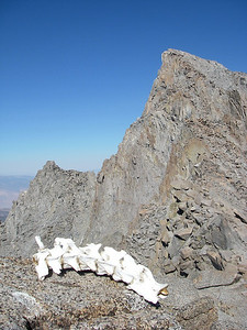 Mount Sill (14,153 ft = 4.314 m).