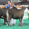 NAILE15-Open-Jersey-Hfr-IMG_0414