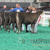 NAILE15-Open-Jersey-Hfr-IMG_0412