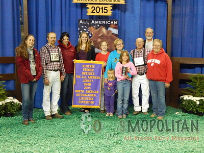 All-American Open Jersey Show Cows 2015