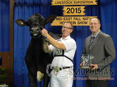 Mideast Fall National Holstein Cow Sho 2015