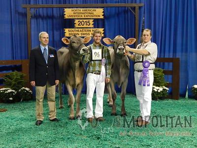 Southeast National Brown Swiss Heifer Show 2015