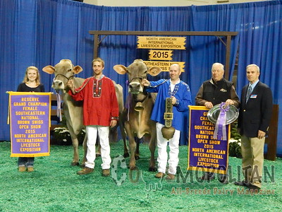Southeast National Brown Swiss Cow Show 2015