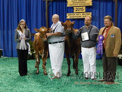 Winter National Open Milking Shorthorn Show 2015