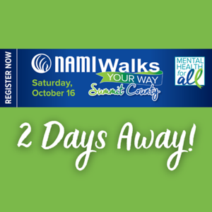 NAMIWalks 2 Days Away! insta