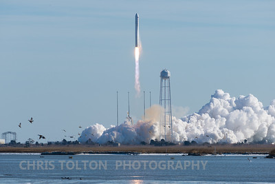 Cygnus Launch Wakes up the Ducks