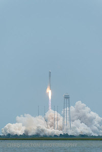 CYGNUS CLEARING TOWER