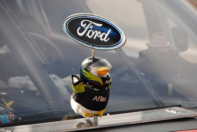 Aflac Duck intake protector