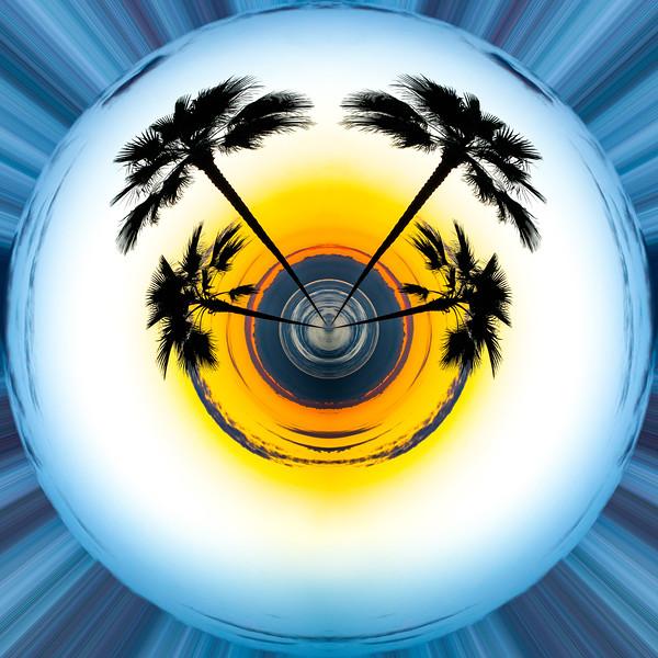 Digital Art, La Jolla Palm Sunset
