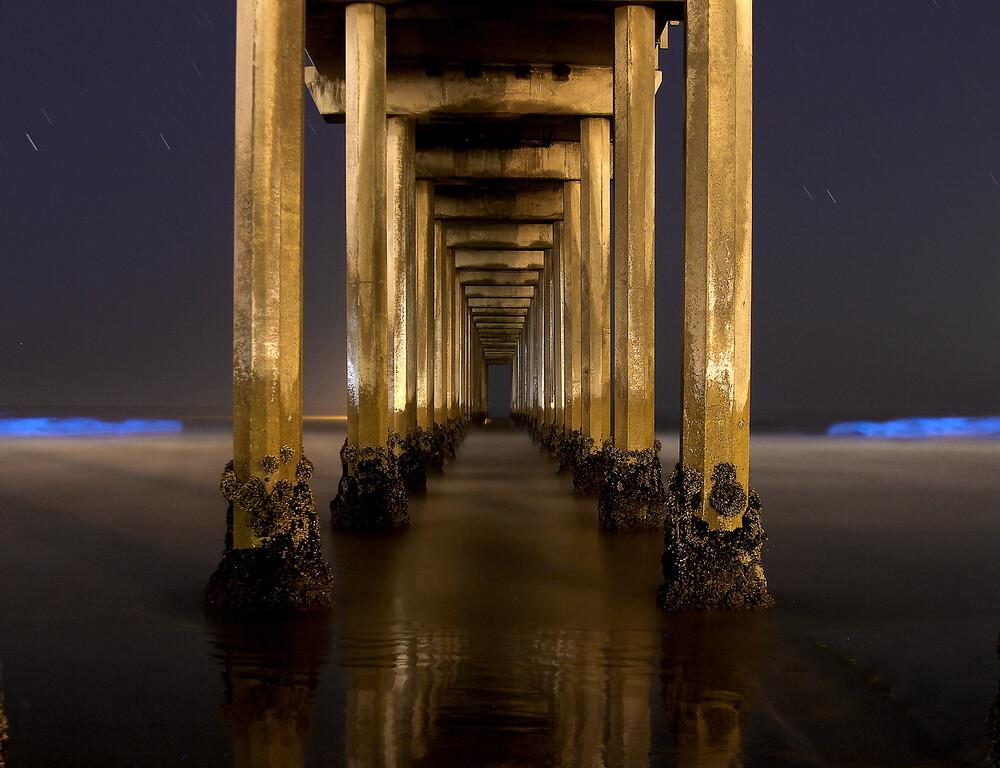 Red Tide, La Jolla