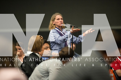 Renee Fernandes/NATA Pat Buchanan, PhD, ATc, GCFT asks a question during the EBP session.