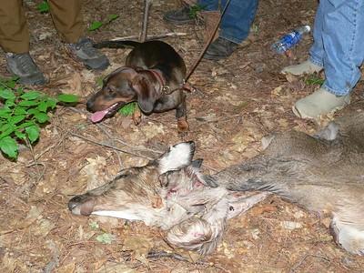 Hunting Workshop 2005 - part 2