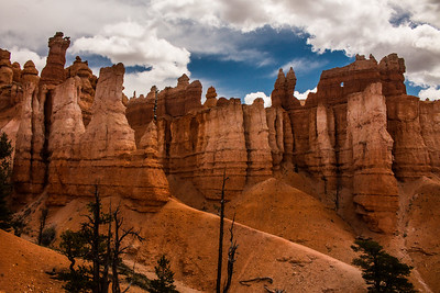 Looking up from down below in Bryce Canyon.