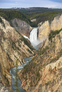 GREAT FALLS OF THE YELLOWSTONE FROM ARTIST'S POINT
