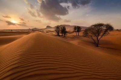 Maleha Desert