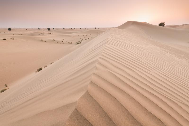 Qudra Desert. Dubai