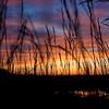 Iowa Grass Sunset May 2016  ©2016MelissaFaithKnight&FaithPhotographyNV_6946