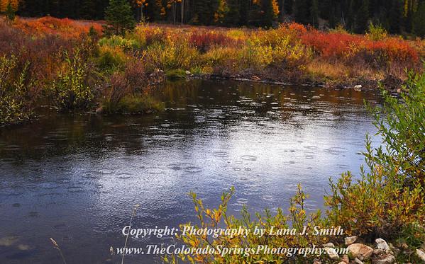 Autumn Rain, Pitkin, CO
