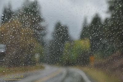 Rain Road (9)sig
