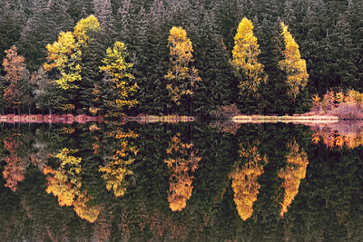 Reflections. Saint Anne Lake, Harghita, Romania