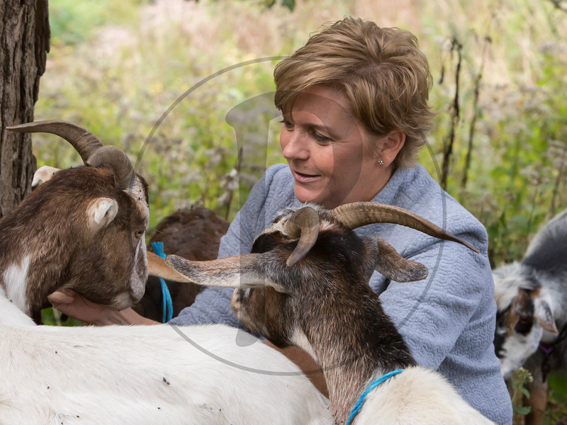 Goats-79